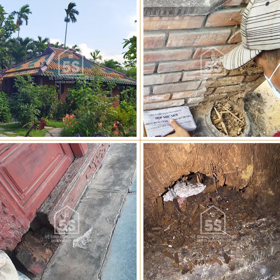 5S diệt mối tại chùa Ông Phật Đà Nẵng