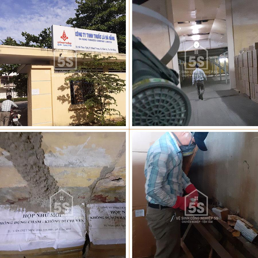 5S diệt mối tại nhà máy thuốc lá Đà Nẵng