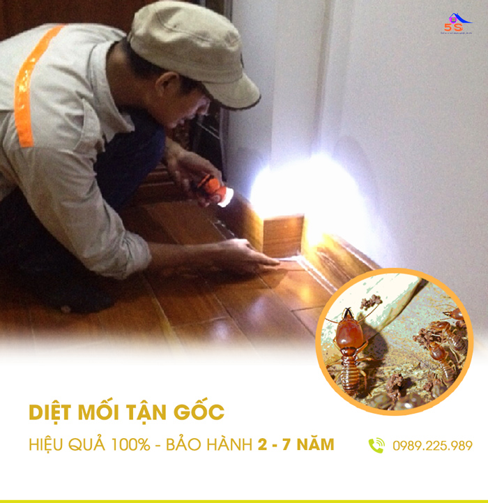 cong-ty-dich-vu-diet-muoi-chat-luong-2