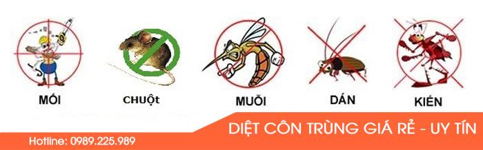 dich-vu-diet-con-trung-gia-re-1