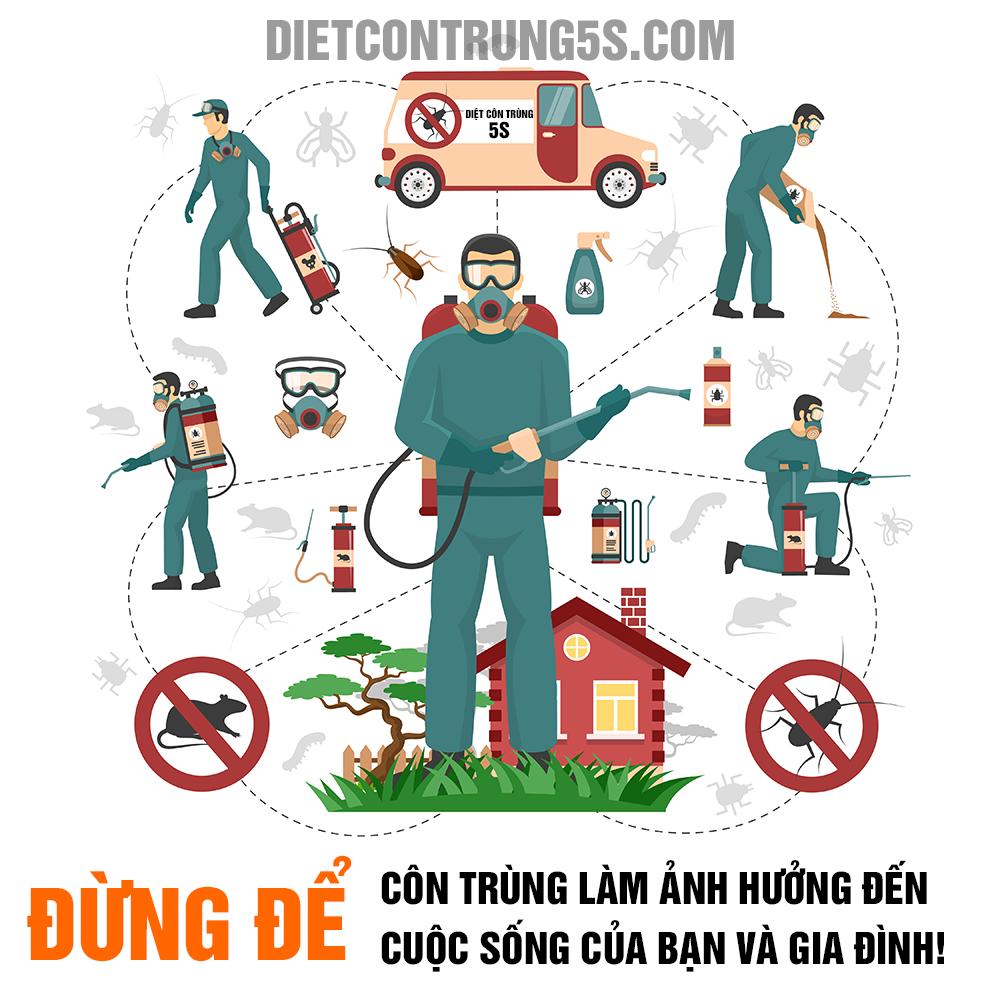 Quy trình diệt côn trùng tại Đà Nẵng