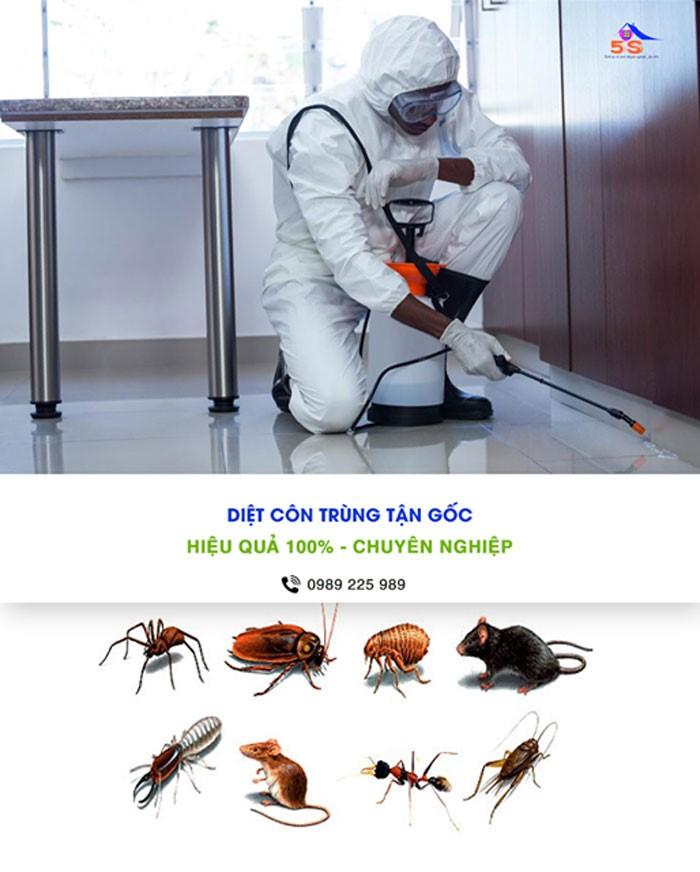 Diệt côn trùng chuyên nghiệp tại Đà Nẵng